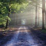Renungan Berjalan bersama Tuhan